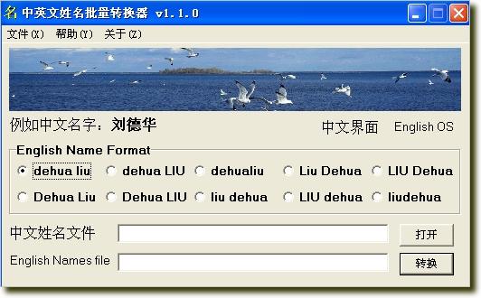 中英文姓名批量转换器1.1.0 绿色版_wishdown.com