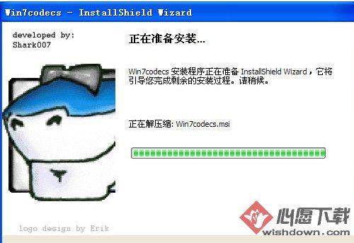win7codecs解码器64位 v10.1.7(64位)
