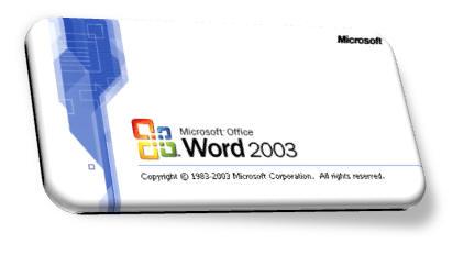 Word2003精简版