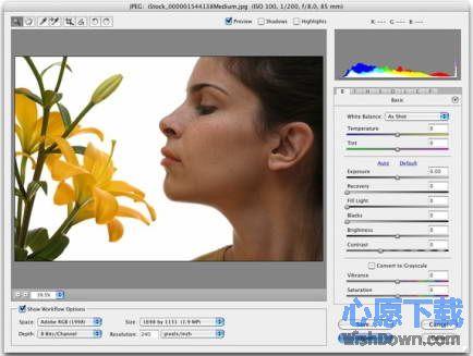 Adobe Camera Raw v9.4.0 绿色版