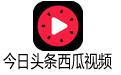 今日头条西瓜视频解析工具 免费版