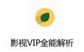 影视VIP全能解析 v1.0 绿色免安装版