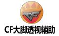 cf大脚辅助|CF大脚透视辅助下载V0628 绿色正式版-心愿下载
