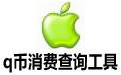 q币消费查询工具 v1.0绿色版