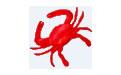 RedCrab(全屏的计算器编辑器) v6.36.0.190 英文绿色版