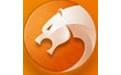 金山猎豹浏览器 v6.5.115.17010 官方版