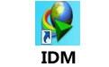 IDM IDM 6.30.5 最新绿色特别版