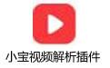 小宝视频解析插件 V1.7绿色版