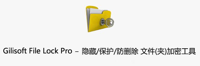 Gilisoft File Lock Pro v11.0 中文注册版