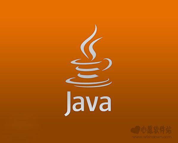 Java SE Development Kit(jdk8)8u141(32/64位) 官方版_wishdown.com