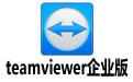teamviewer企业版 13.0.6447 官方版