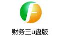 财务王u盘版 v4.0官方版