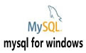 mysql for windows v5.7.19 32位/64位官方版(附安装教程+使用技巧)