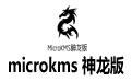 microkms 神龙版 v17.12.25