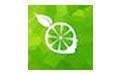 柠檬云财务软件专业版 v3.2 官方版