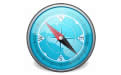 指南针域名查询软件 1.0 绿色版