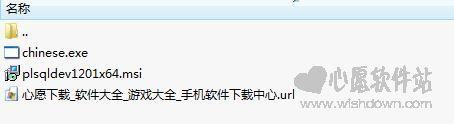 PLSQL Developer 64位(Oracle数据库开发工具)V12.0.1中文汉化版_www.rkdy.net