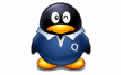 蜘蛛网完美批量挂QQ软件 4.8 绿色版