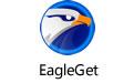 EagleGet(猎鹰下载器) V2.0.4.50最新版