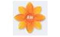 Artweaver 免费绘画软件 v6.09 官方版