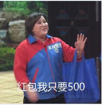 2018贾玲春晚表情包18枚高清最新版_wishdown.com