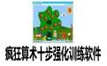 疯狂算术十步强化训练软件 5.9 注册版