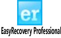 EasyRecovery Professional(硬盤數據恢復工具) V11.1 專業版