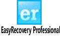 EasyRecovery Professional(硬�P���恢�凸ぞ�) V11.1 ��I版