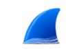 Wireshark抓包分析 V2.4.6 官方版