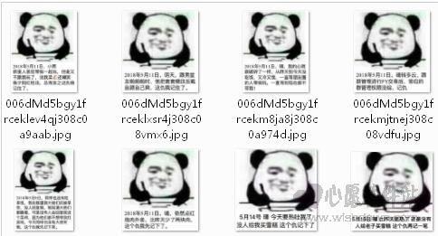 熊猫头日记表情包最新版_wishdown.com