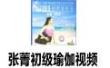 张菁初级瑜伽视频
