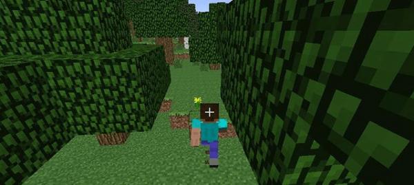我的世界自动行走MOD1.8绿色版_wishdown.com