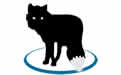 MetaFox(视频转换器) v1.4.5免费版