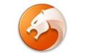 猎豹安全浏览器 v6.5.115.18480 官方正式版