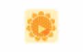 Sunlogin_向日葵远程控制手机版 v9.5.0.27712 官方版