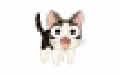 靓猫VIP视频解析 v2.0.1 绿色版