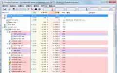 Process Explorer(详细显示计算机信息) v16.12.0.0中文绿色版