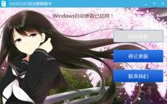 Windows自动更新助手 v1.0免费版