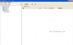IsoBuster Pro(抓取光盘镜象的内容) v4.0 中文版