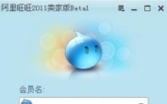 阿里旺旺卖家版2013 v7.20.37T 绿色去广告版