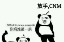 龙玉涛杀妈是什么梗