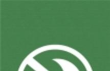 2019绿色手机壁纸潮带字图片大全
