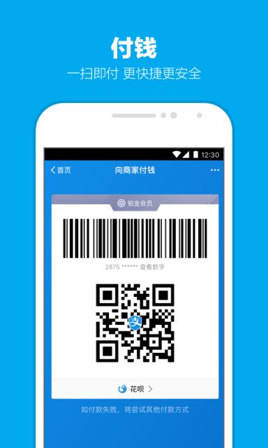支付寶2019集齊五福最新版V10.1.15.463 安卓版