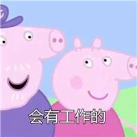 会考上的小猪佩奇表情包V1.0 免费版