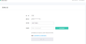 CS:GO国服实名认证反作弊申请工具V1.03.1 绿色版