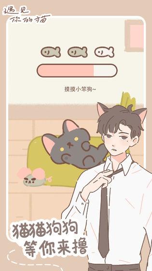 遇见你的猫