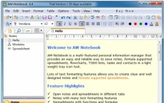 AM-Notebook Lite(记事本便笺软件) v6.4 官方版