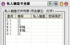 私人磁盘专业版 v5.0 特别版
