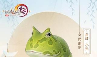 剑网3跟宠角蛙小光获取攻略