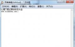 灵者编辑(专用记事本软件) 绿色版